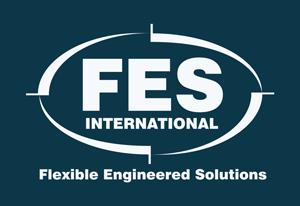FES International Logo